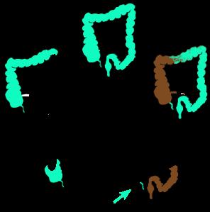 Appendix_function_diagram